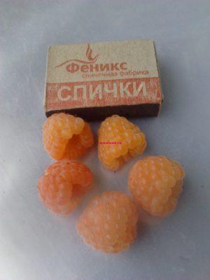 жёлтая малина Ананасная Вигорова купить